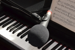 Gesangsmikrofon XM8500