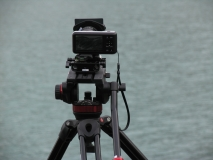 BMPCC on tripod head